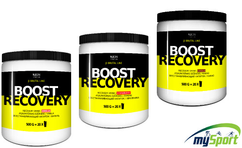 Dion Boost Recovery 500g