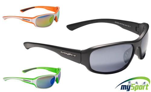 Swiss Eye Freeride | Multisport glasses
