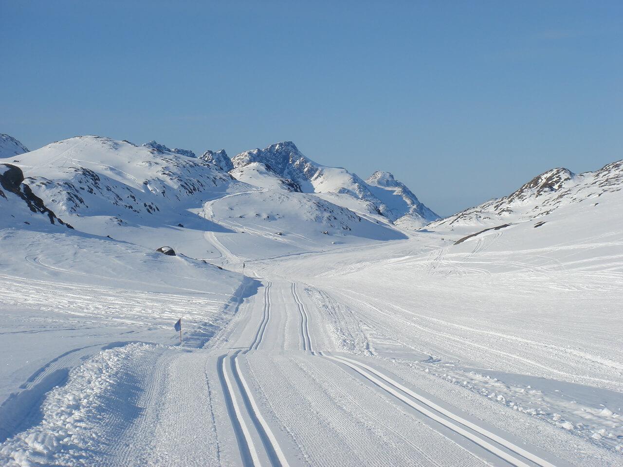 Distanču slēpošana Ivars